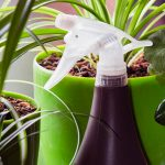 Todos los secretos para pulverizar plantas perfectamente